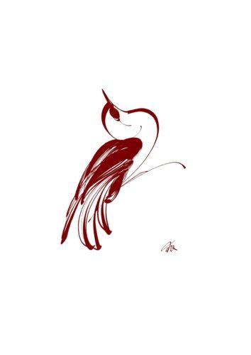 Oiseau Tiré De Sur L'Aile Du Vent