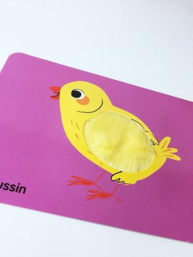Contenu du jeu de Cartes à toucher animaux pour portfolio