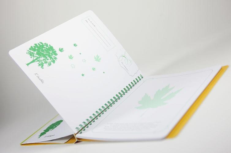 Contenu Du Livre-jeu Herbier Pour Portfolio