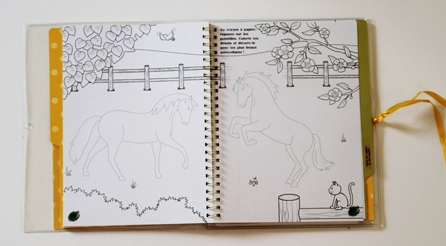 Mon Kit Passion Cheval Coloriage