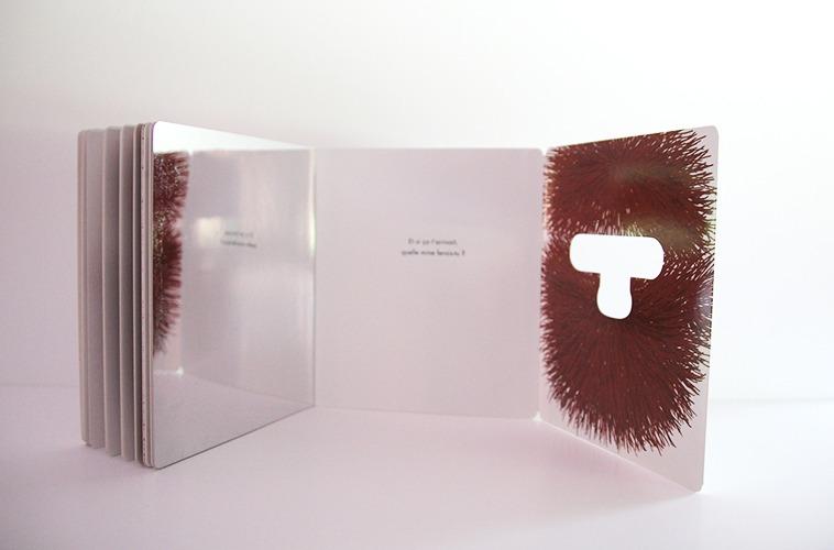 Contenu De L'album Atchoum Pour Portfolio